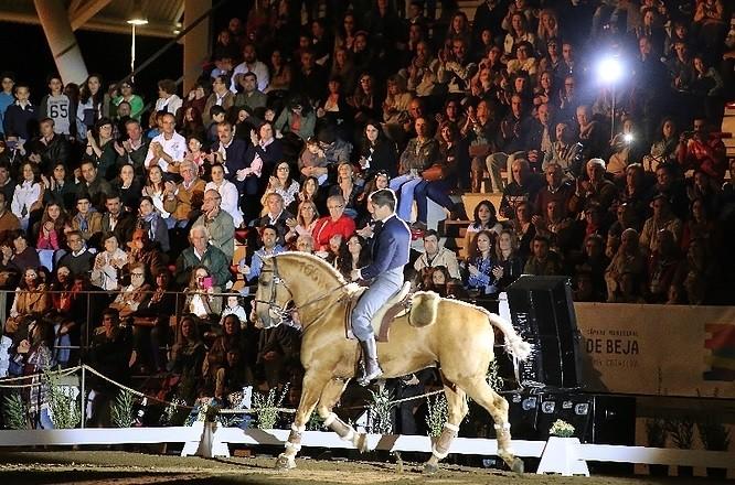 Salão do Cavalo