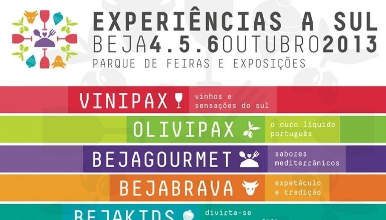 EXPERIÊNCIAS A SUL 2013