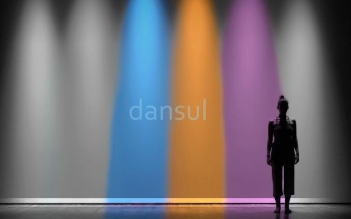 Dansul 2013