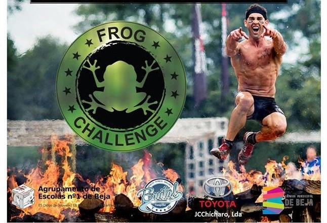 Frog Challange