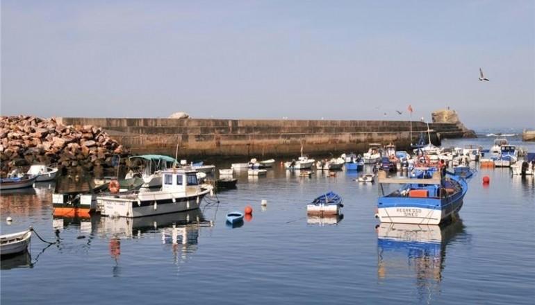 porto pesca Odemira