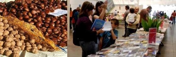 Livros e Frutos Secos