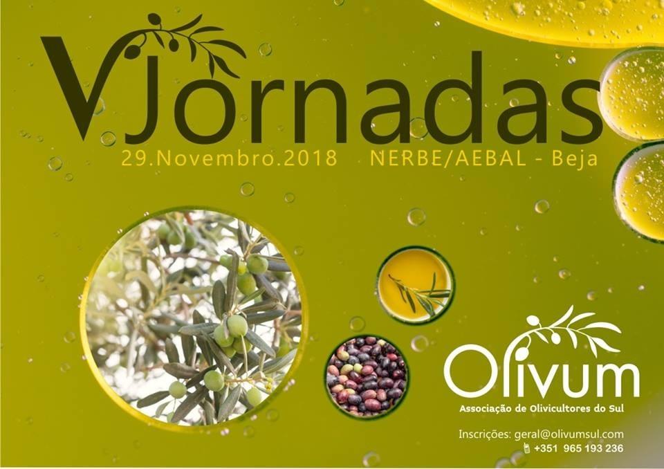 jornadas olivum
