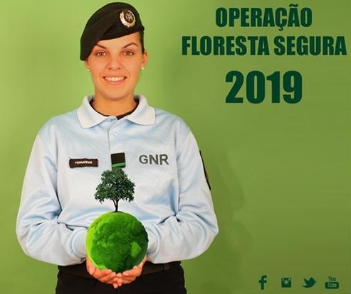 operação floresta 2019