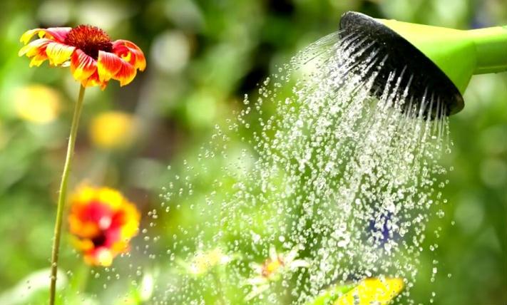 água filme