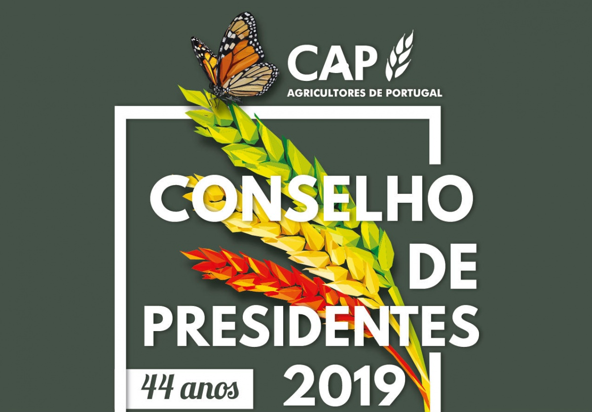 Conselho presidentes cap