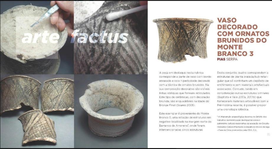 ARTEfactus