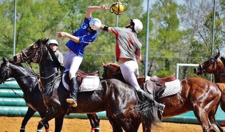 http://www.vozdaplanicie.pt/images/240720171016-625-horseball2.jpg