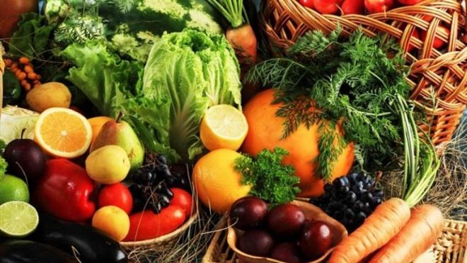 Agrobio promove agricultura sustentável em Beja