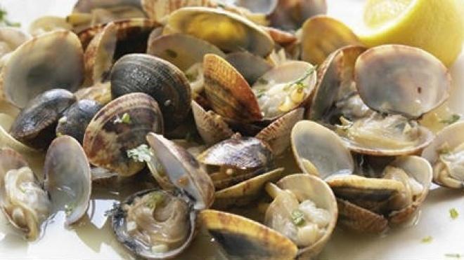 Semana Gastronómica do Molusco em Odemira