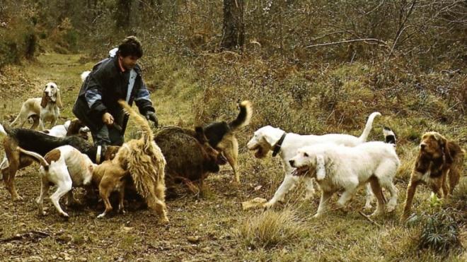 Caça Grossa atrai caçadores a São João dos Caldeireiros