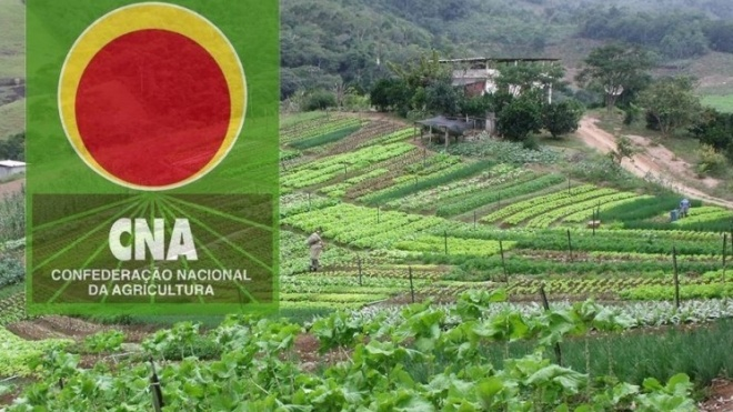 CNA: Estatuto da Agricultura Familiar pode não resolver problemas do sector