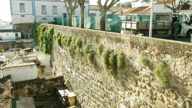 Trabalhos de conservação da muralha no troço do Terreirinho das Peças