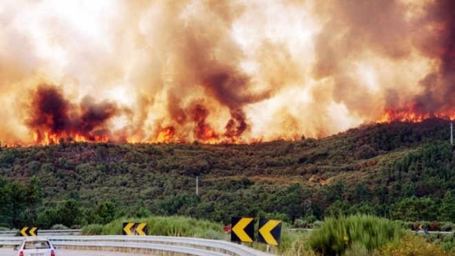 GNR dá recomendações em caso de incêndio florestal