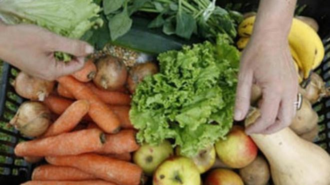 Aljustrel promove iniciativa que aproxima consumidor do produtor