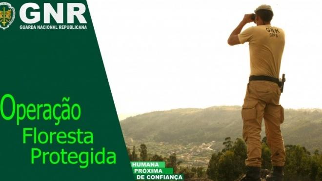 """GNR avança com Operação """"Floresta Protegida"""""""