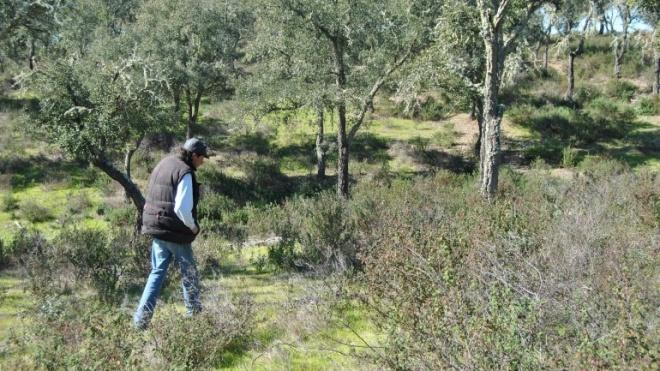 Parque Biológico de Cabeça Gorda abre em março