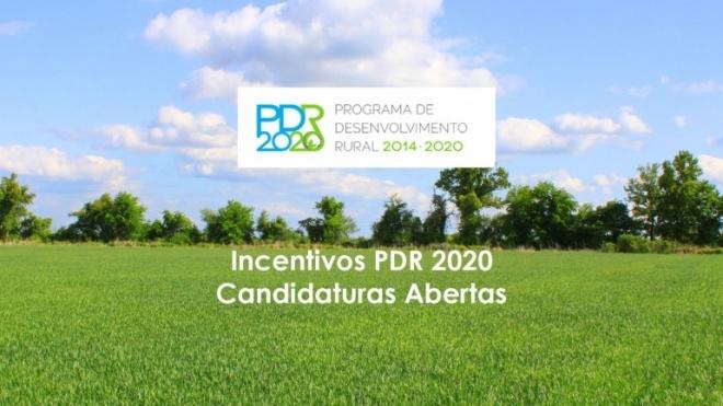 PDR 2020 com concurso aberto