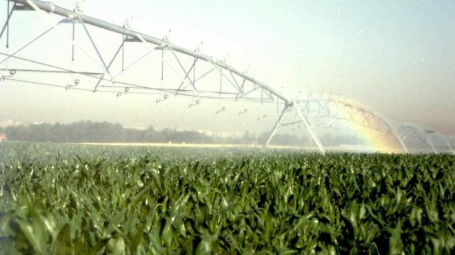 Furtos nas explorações agrícolas estão a aumentar