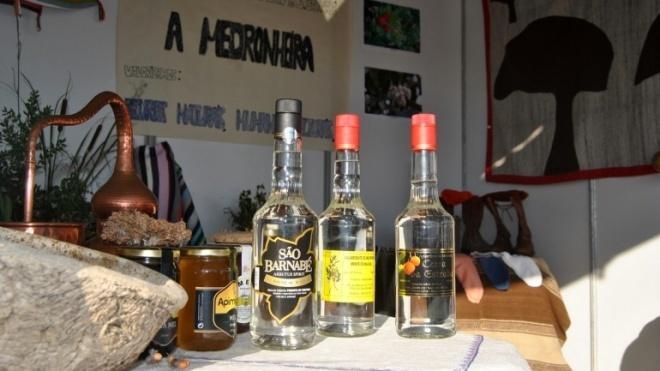 """""""A Medronheira"""" aposta na valorização dos produtos tradicionais para inverter desertificação de São Barnabé"""