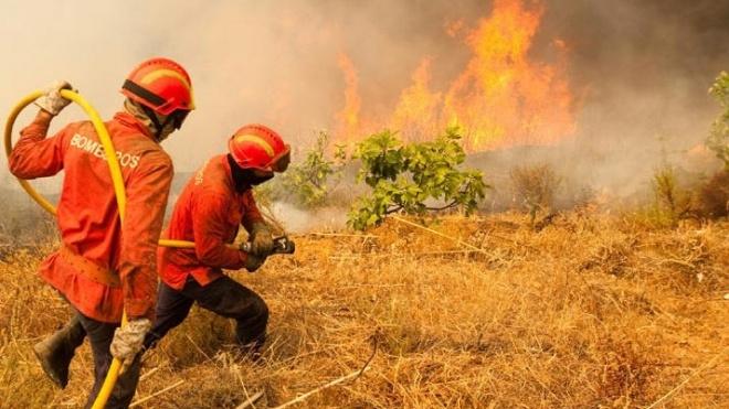 Castro Verde: No rescaldo do incêndio, Câmara lamenta ferimentos sofridos por bombeiros