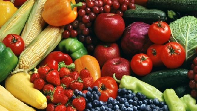 CEBAL procura novas respostas para aumentar qualidade dos hortícolas