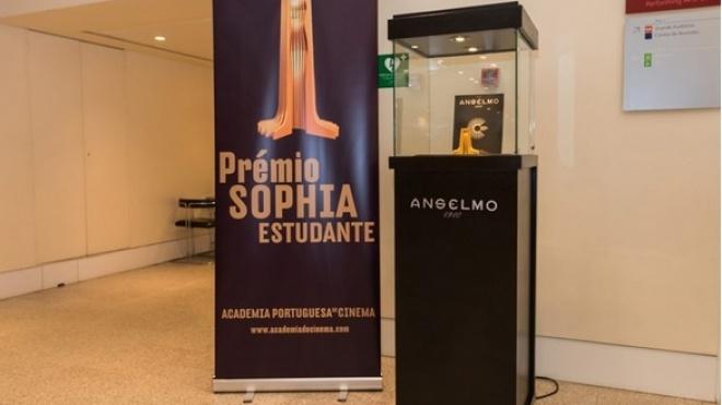 Inscrições abertas para os Prémios Sophia Estudante