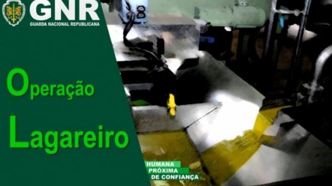 """GNR promove """"Operação Lagareiro"""""""