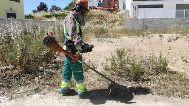 Almodôvar com trabalhos para minimizar os riscos de incêndio