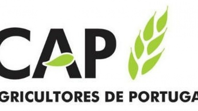 """CAP: """"Prémio Nobel da Paz engrandece a agricultura"""""""