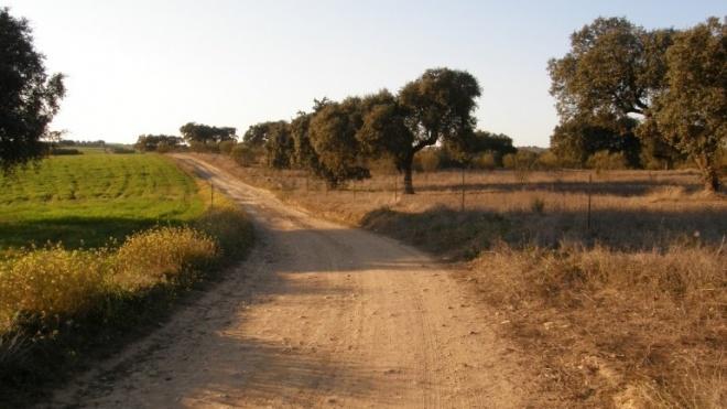 """Projeto AURORAL centra-se no """"equilíbrio entre as zonas rurais e urbanas"""""""