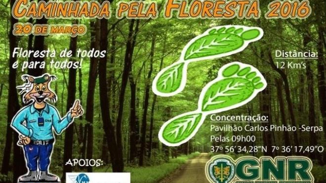 GNR promove caminhada em Serpa