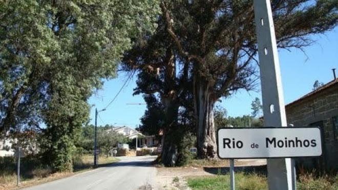 Rio de Moinhos regressa ao protesto