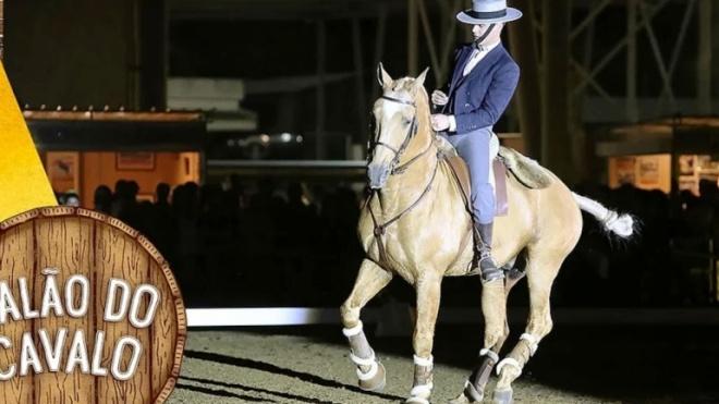 Salão do Cavalo regressa a Beja