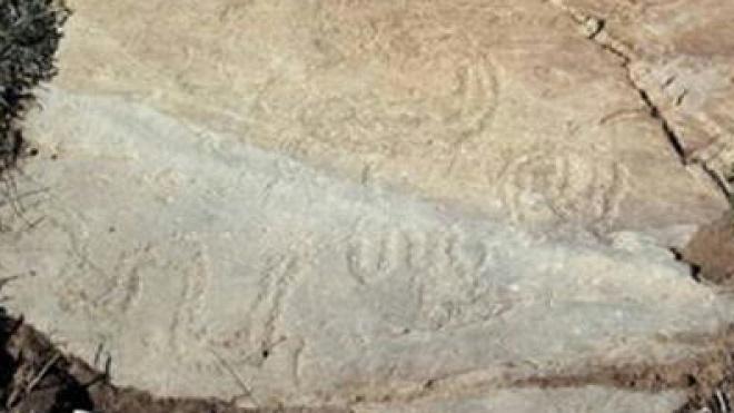 """""""Pode ser inédita"""" arte rupestre descobertas no Guadiana"""