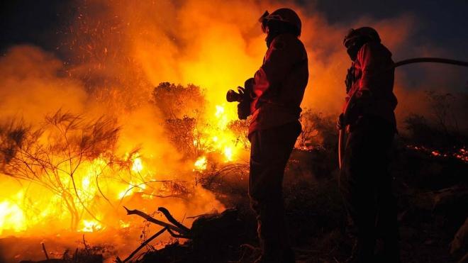 Governo prepara com autarquias nova época de incêndios florestais