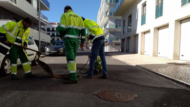 EMAS promove campanhas para controlo de pragas