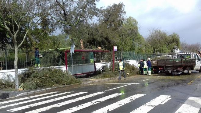 Jardim Público de Beja fechado por causa do mau tempo