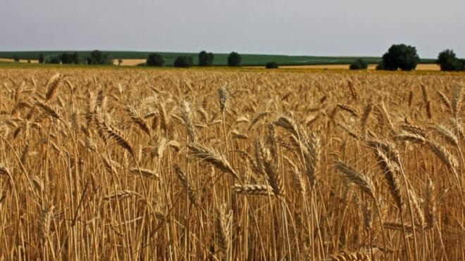 CAP contesta cortes na Política Agrícola Comum