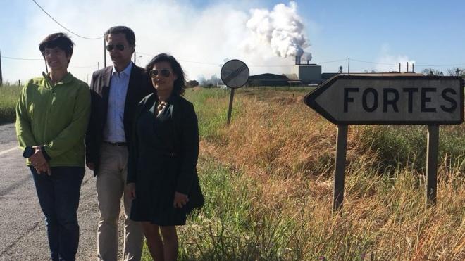 Nilza de Sena quer intervenção do Ministério do Ambiente em Fortes