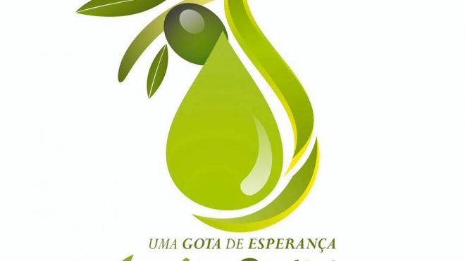 """""""Azeite Solidário"""" com mais de uma dezena de empresas agrícolas aderentes"""