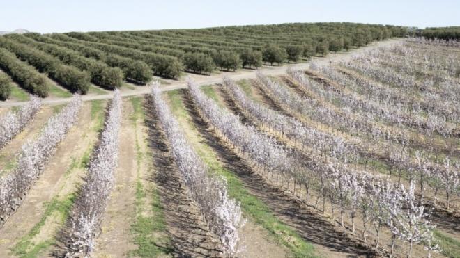Beja: CAP debate desafios de Alqueva e medidas de combate à seca