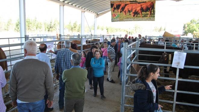 Feira de Garvão é secular e mostra o que de melhor se produz no mundo rural