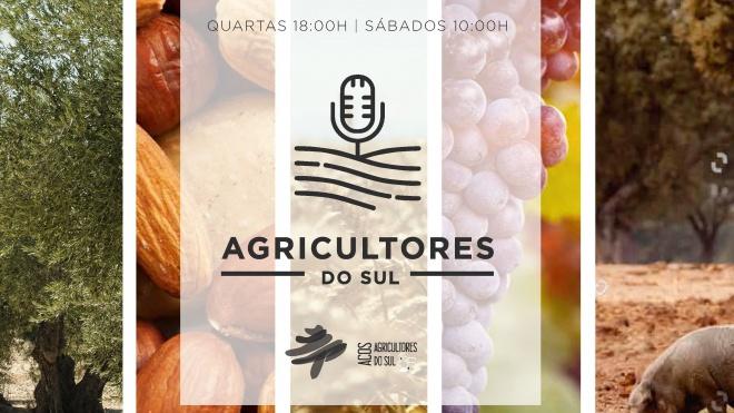 """""""Agricultores do Sul"""": Reforço no setor dos cereais"""