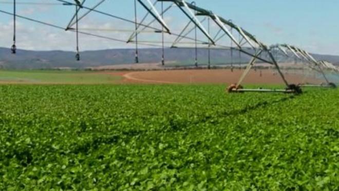 Seca: EDIA facilita acesso à água disponível nas suas infra-estruturas