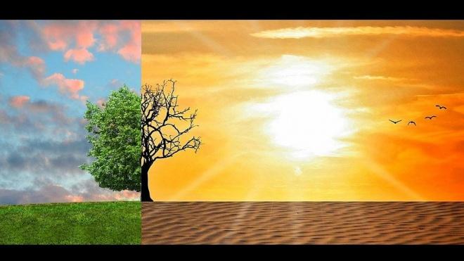Mértola promove encontro técnico sobre alterações climáticas