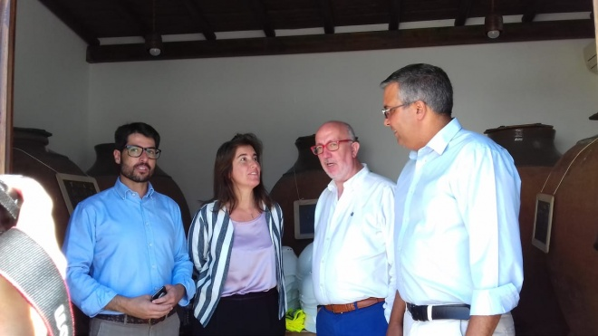 Adega Cooperativa de Vidigueira, Cuba e Alvito aposta no enoturismo