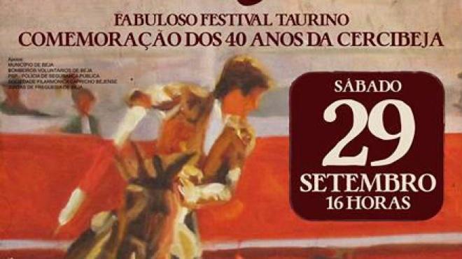 X Festival Taurino a Favor da Cercibeja