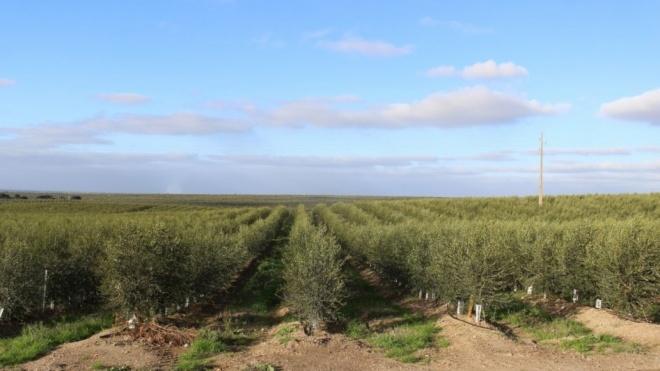 Beja: ZERO visita áreas críticas associadas à intensificação agrícola