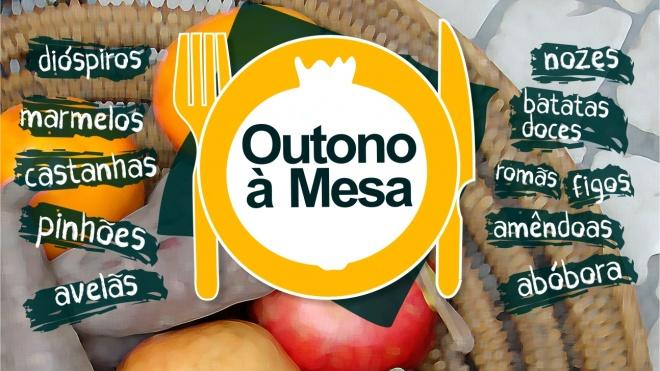 """""""Outono à Mesa"""" no concelho de Alvito"""